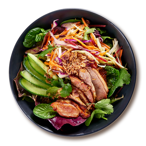 Peking Duck Bowl Salads